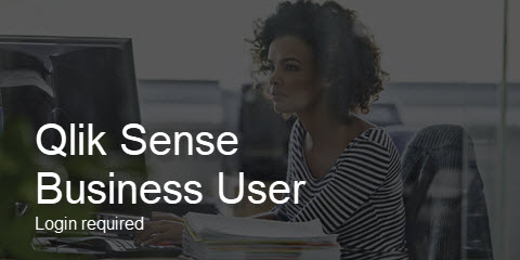 Qlik Sense Business User
